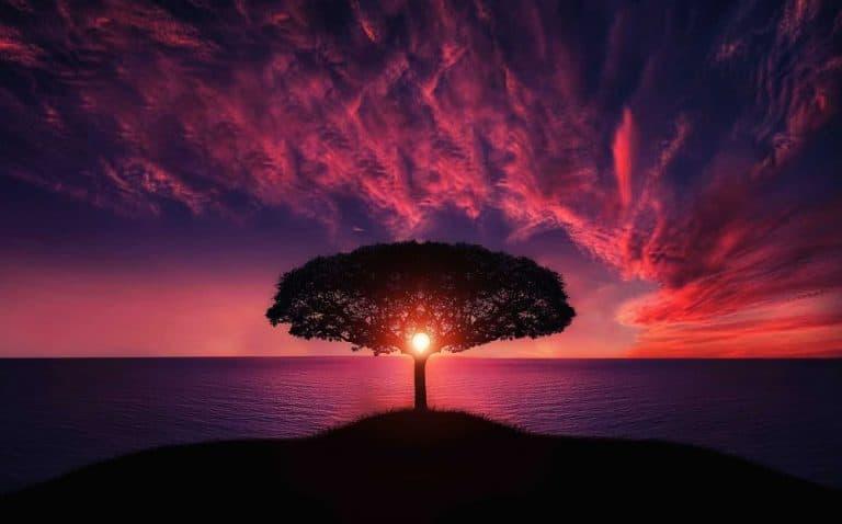 Sunset Photography Tips - Shutterturf