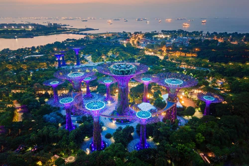 Singapore Garden by the bay - Shutterturf