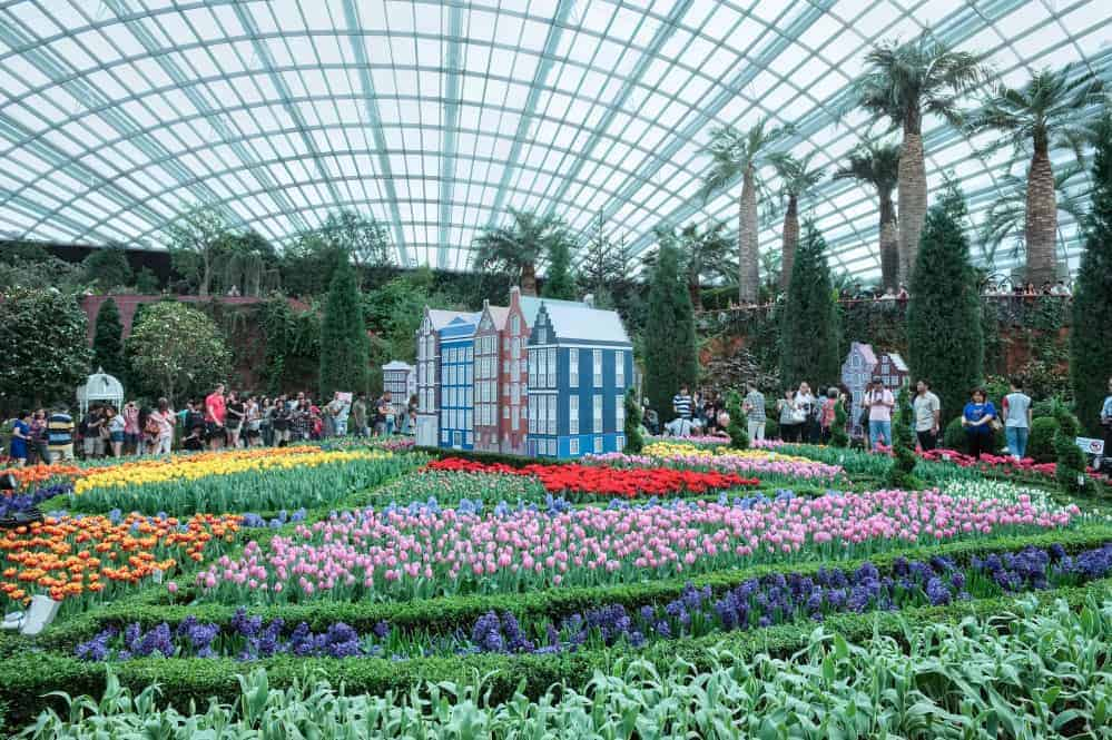 Flower Dome, Gardens By The Bay - Shutterturf