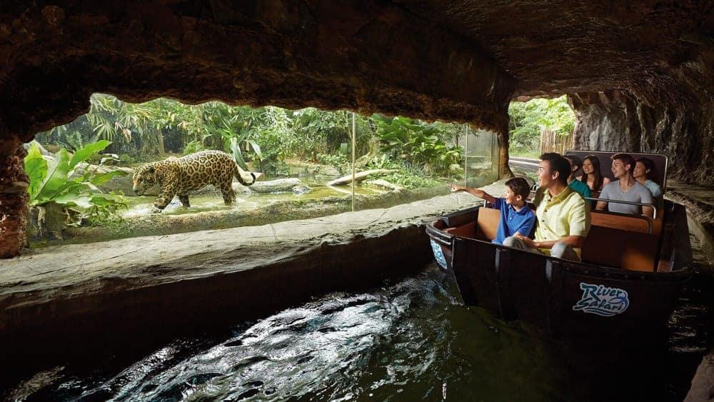 River Safari, Singapore - Shutterturf