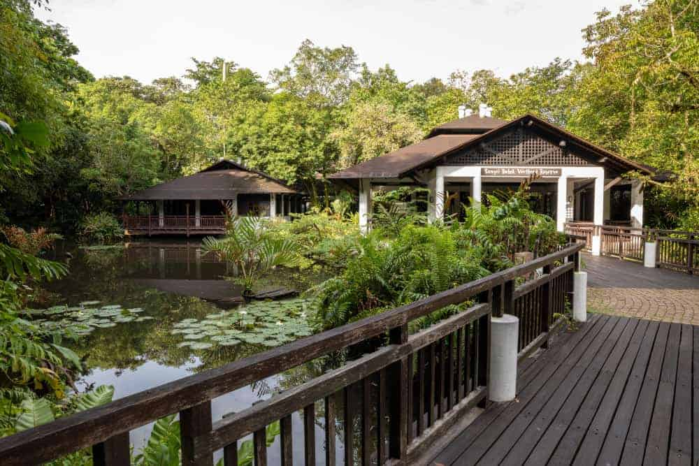Sungei Buloh Wetland Reserve, Singapore - Shutterturf